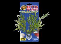 Betta Növény – Bambusz